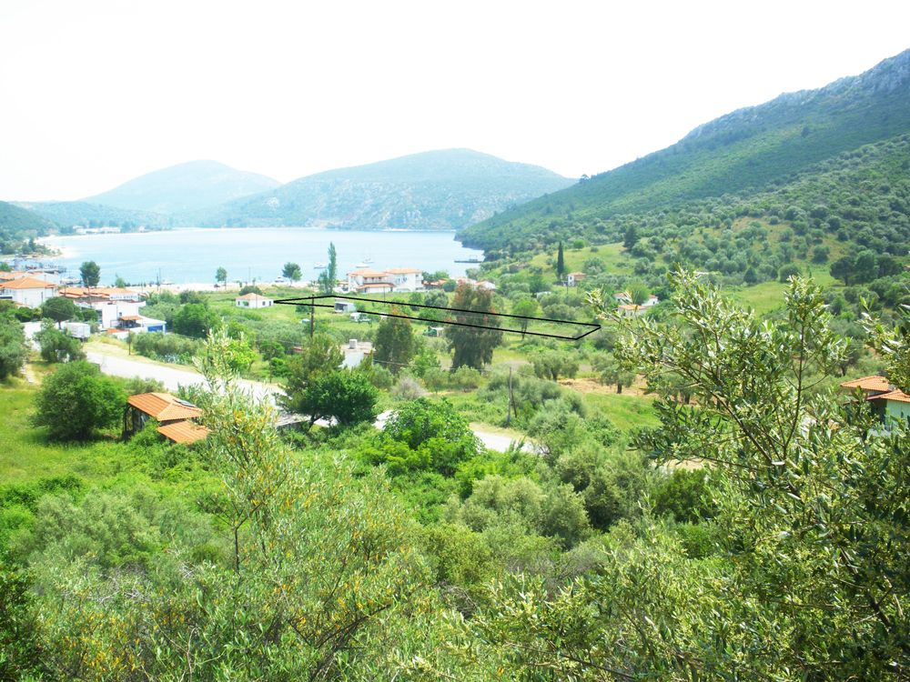 Земля в Халкидики, Греция - фото 1