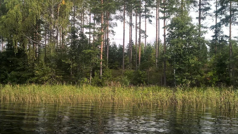 Земля в Пиексямяки, Финляндия, 5500 м2 - фото 1