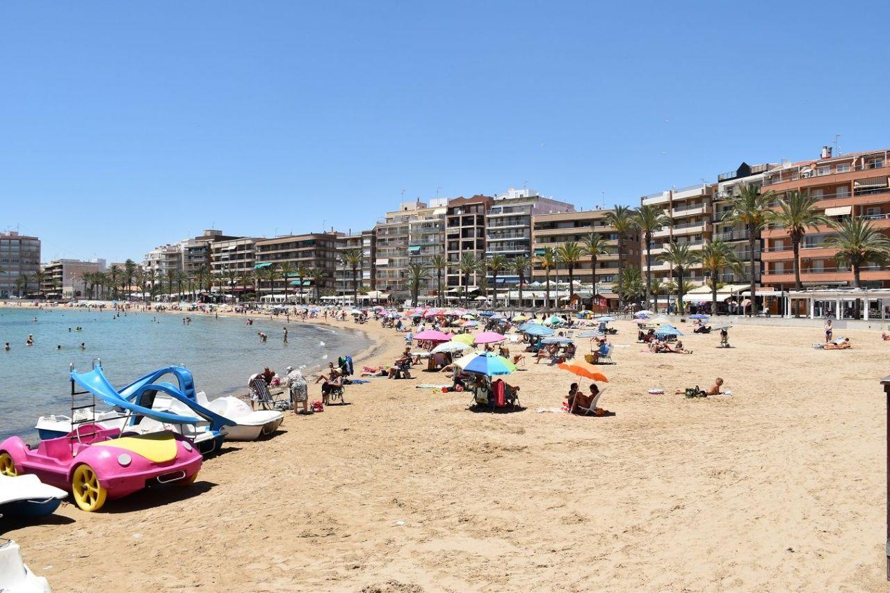 Испания рн торревьеха