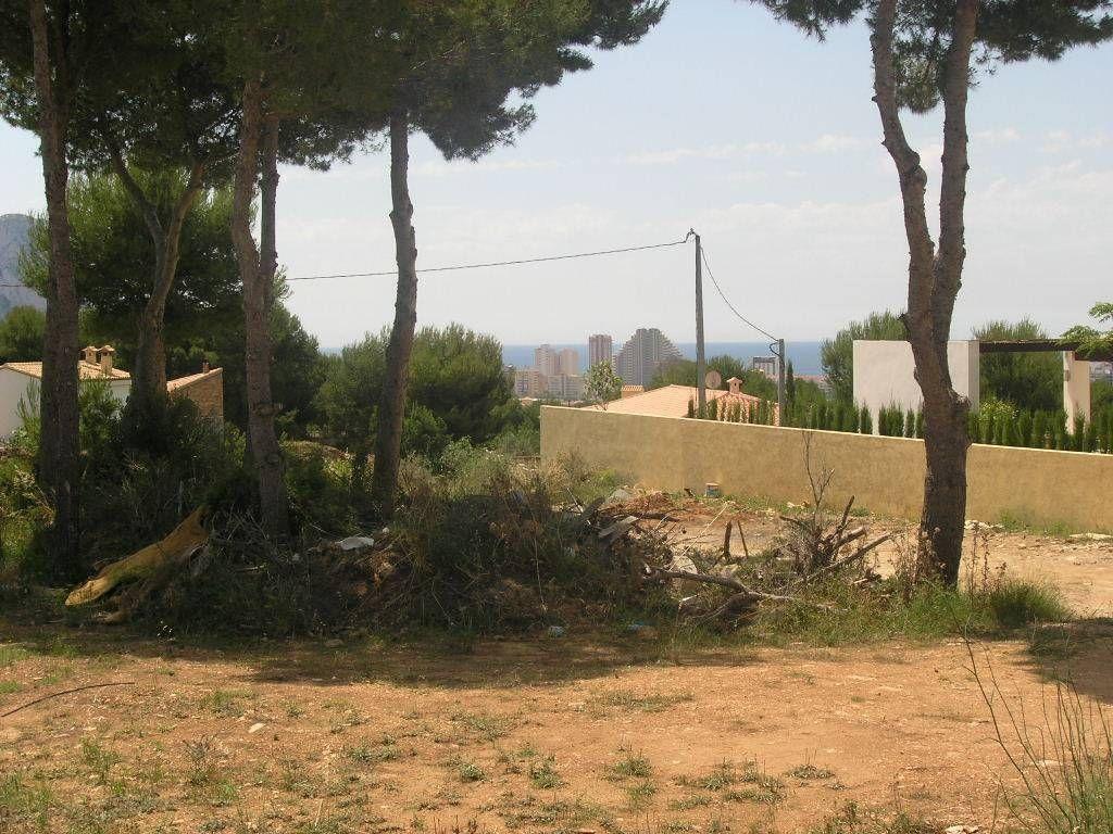 Купить участок земли в испании