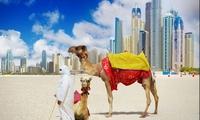 Жилье в Дубае продолжает дешеветь