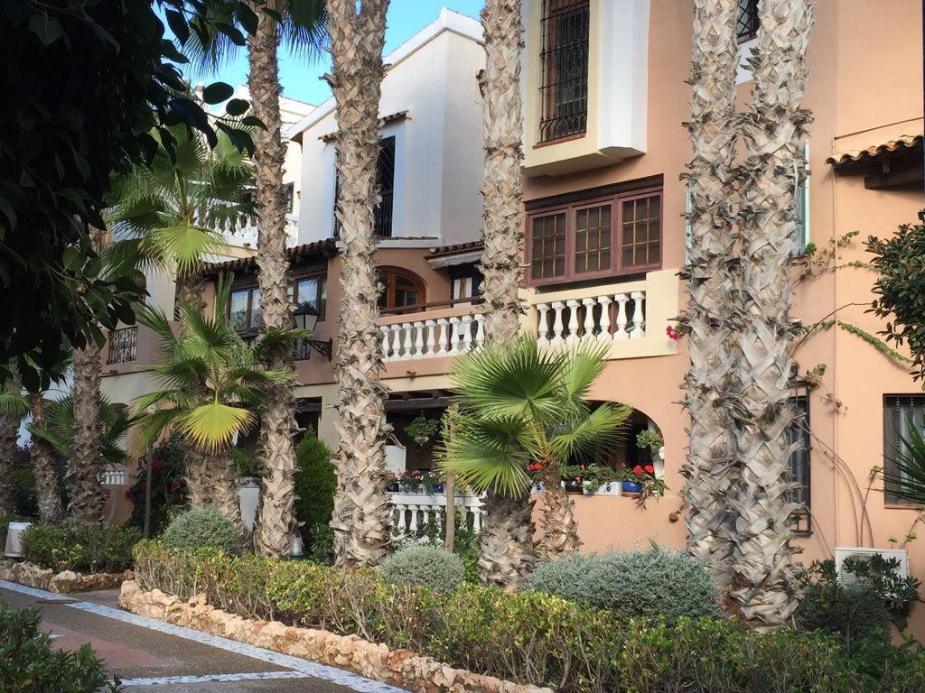 Аликанте испания снять жилье