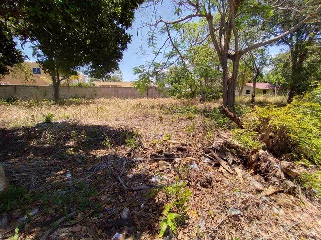 Купить землю в доминиканской республике самая дешевая недвижимость в чехии